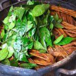 Ayahuasca medicina para alma y cuerpo