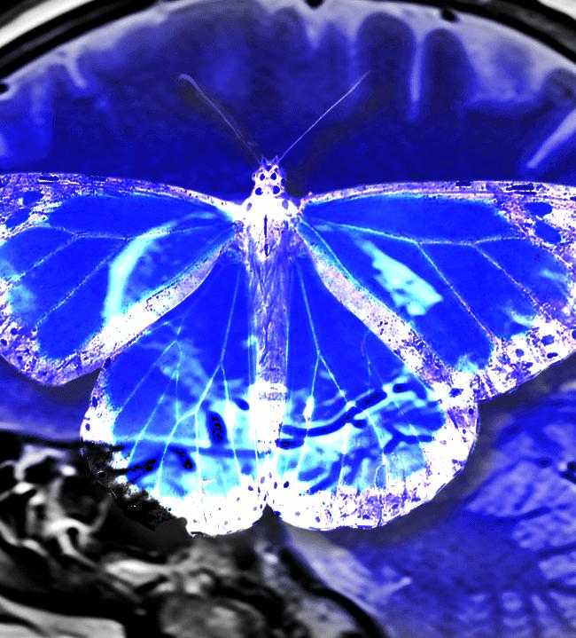 mk ultra proyecto monarca