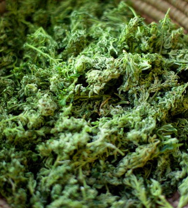 sexxpot cannabis placer sexual de la mujer
