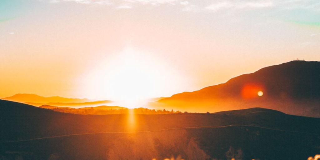 También conocida como la vitamina del sol, la vitamina D es un suplemento natural puede ayudar al sistema inmune a combatir el COVID-19.