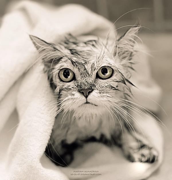 ventajas baños fríos